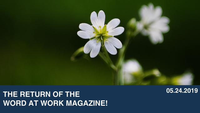 The Return of the Word at Work Magazine!