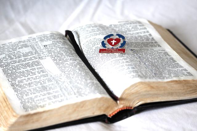 Proclaiming Christ Across Cultures: Spotlight on Dr. Karen Scott, new Adjunct Faculty