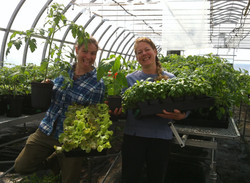 Plants certifiés biologiques