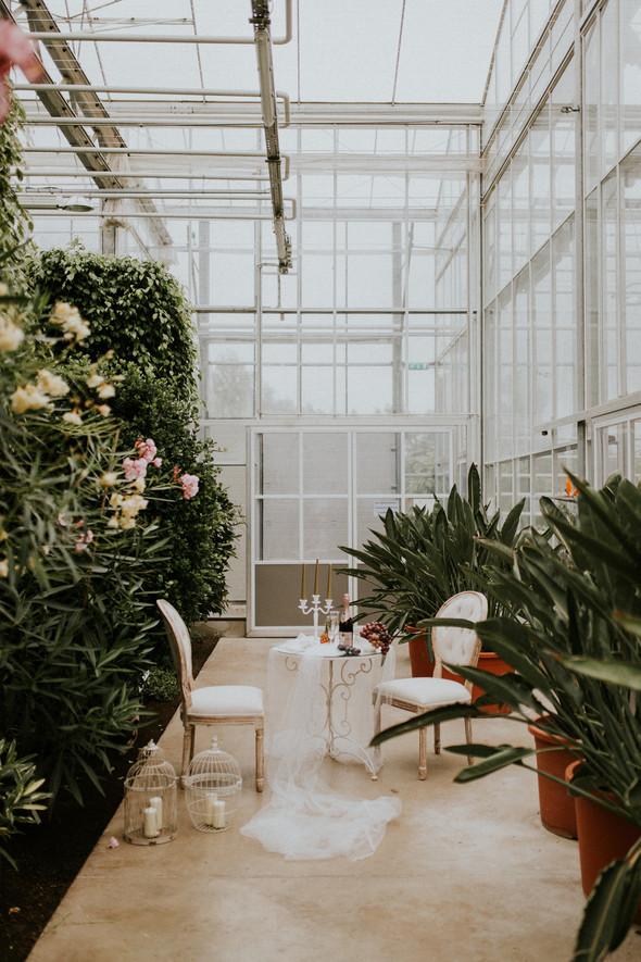 033_Wedding_Photographer_Ainars_Mazjanis_Liepupes Manor.jpg