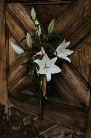 033_Wedding_Photographer_Ainars_Mazjanis_Wedding Cesvaines Pils.jpg
