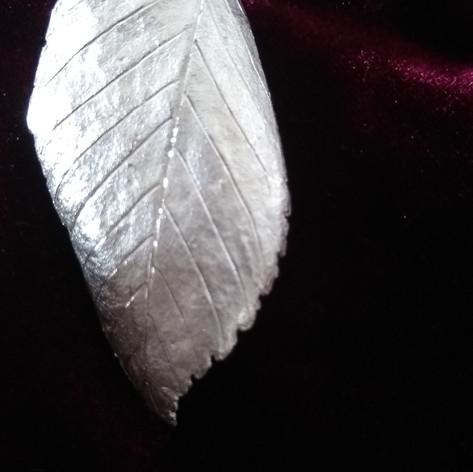 Silberblatt