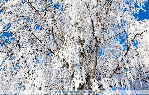 Lumen aarteet