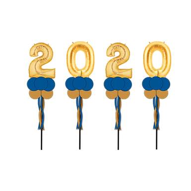 2020 Party Pole Group