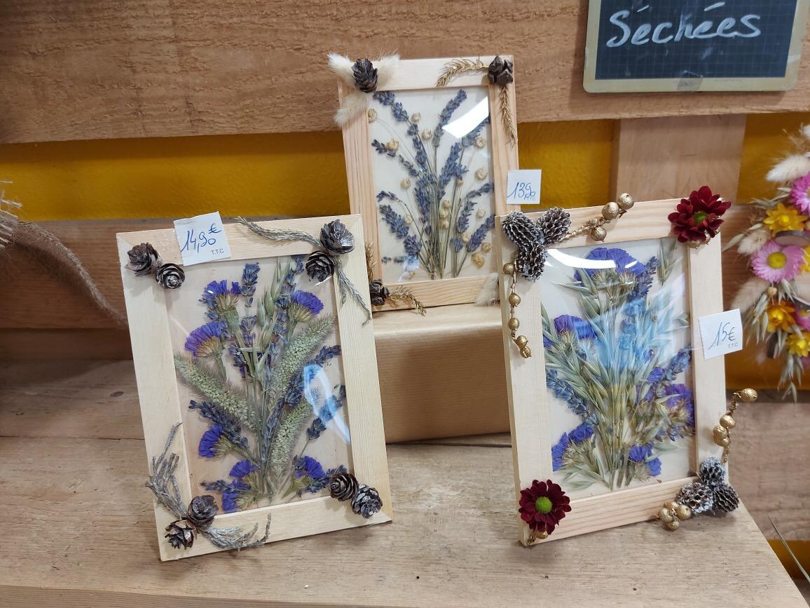 cadre_fleursechees_01