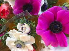 Bouquet de 5 anémones 4€99