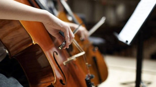 Audition Advice for Aspiring Musicians from David Sheets, AYO Double Bass Faculty