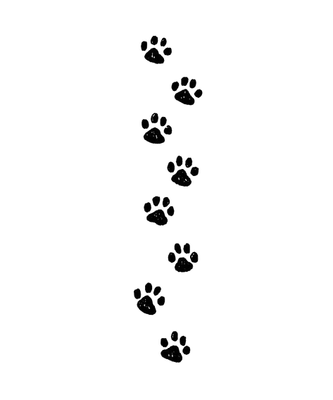 paw%2520prints_edited_edited.png
