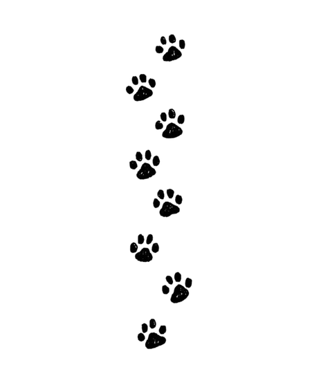 paw%20prints_edited.png