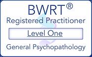 Registered Level 1[8916].png
