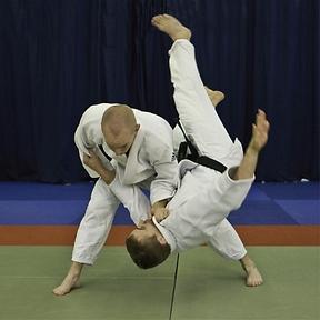 Judo Logo mood board 3.png