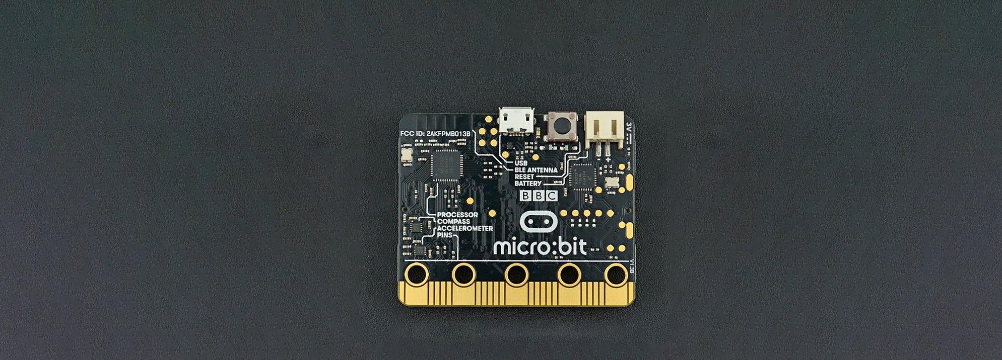 capa_microbit.jpg