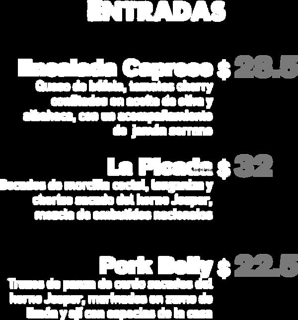 menu_entradas_texto.png