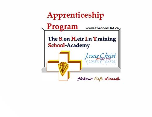 apprenticeshipprogramthesonshat.png