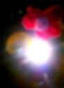 flowermic.png