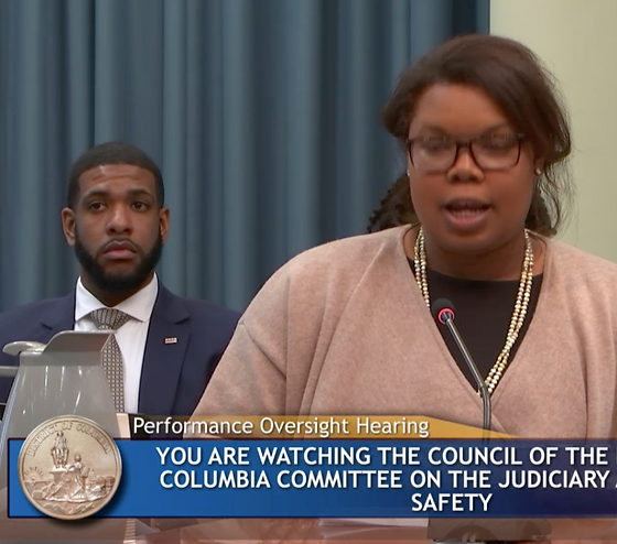Sydelle at Public Safety Hearing