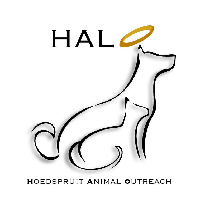 large-halo-logo.jpg