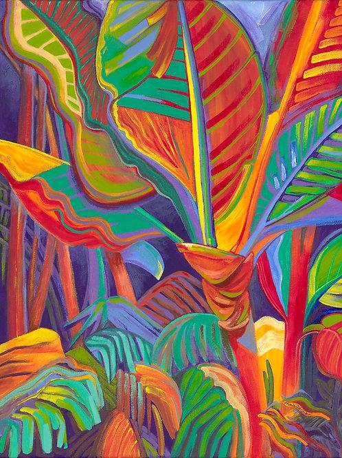 Sanctuary In The Jungle