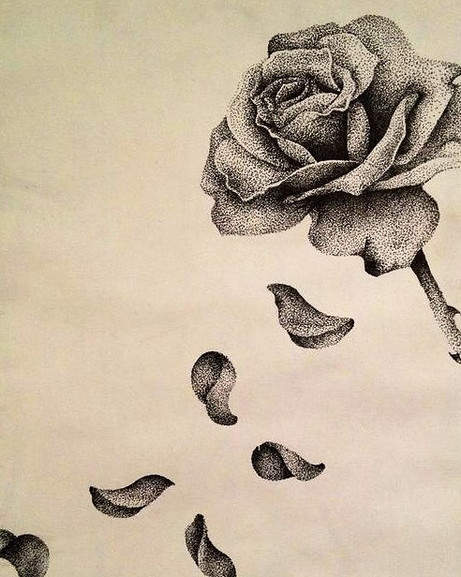 Because Thorns Have Roses