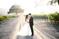 Sima and Barzin | Wedding