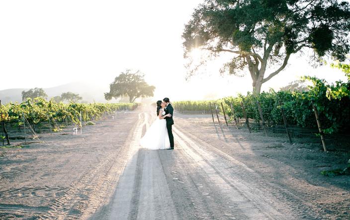 LR Photography | Sima and Barzin's Wedding