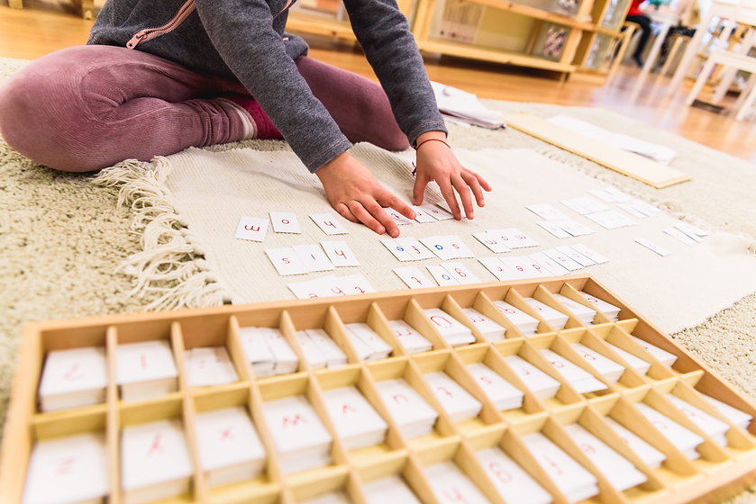 The moveable alphabet is a Montessori tool used to teach reading, spelling, and writing. There are multiples of each letter and each letter has its own compartment in a wooden box with vowels in blue and consonants in red.