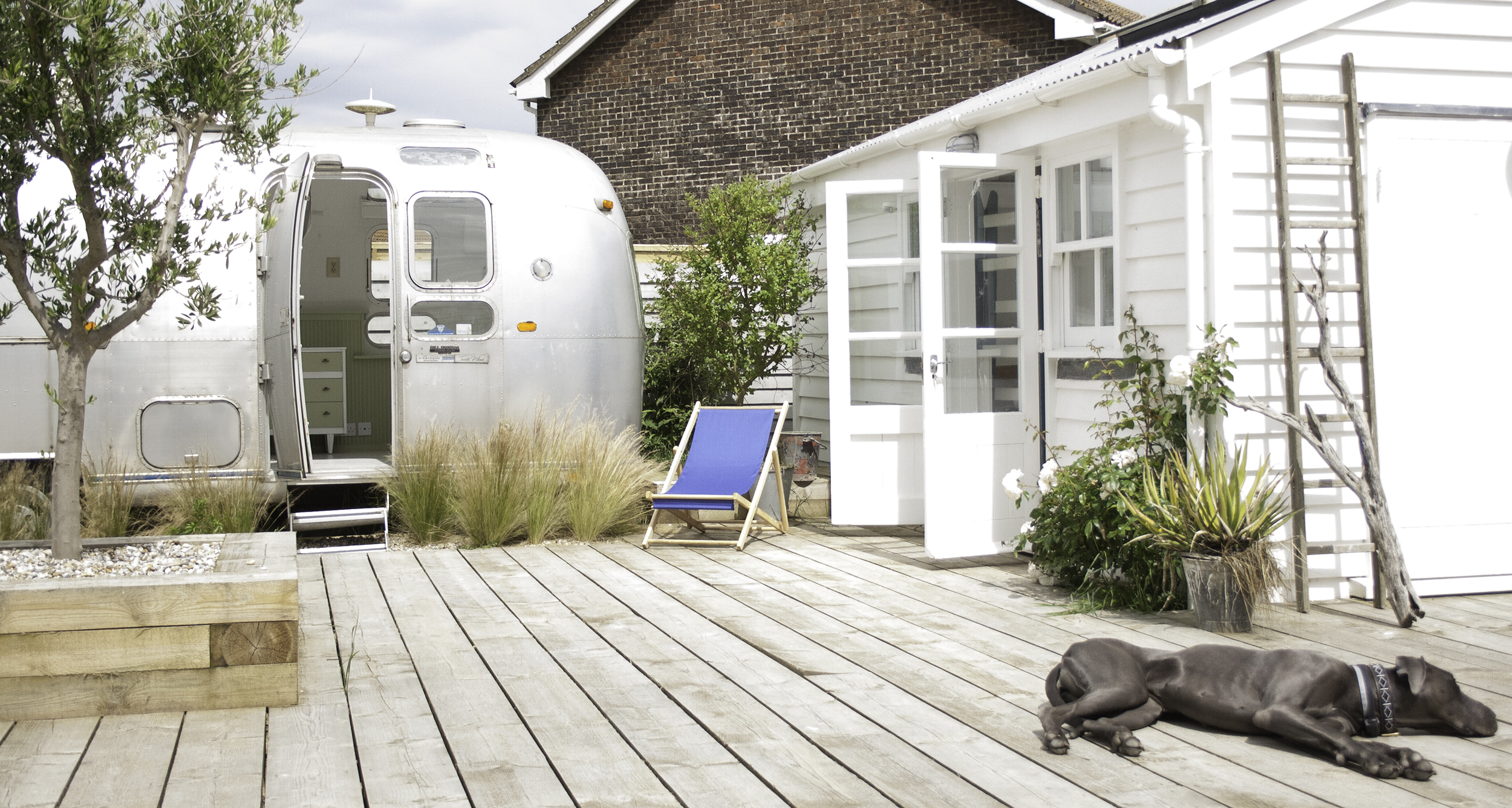 Airstream, Cabin and dog