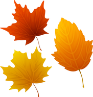 50-502316_top-88-autumn-leaves-clip-art-