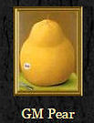 Genetically Engineered Pear
