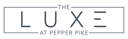 The_Luxe_Final_Logo_PMS_7545-01.png