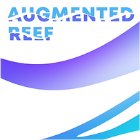 PP_1_AUGMENTED_REEF 20.png