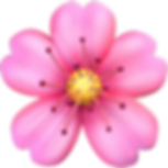 cherry-blossom.png