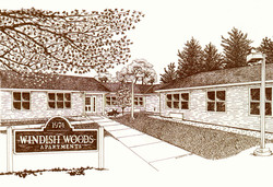 Drawing - Windish Woods