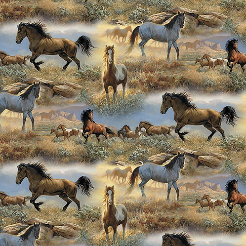 Horses on the Praire. Horses