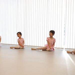 Ballet Observation Class