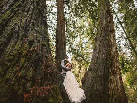 Shaylee + Jake | Redwood National Forest Elopement