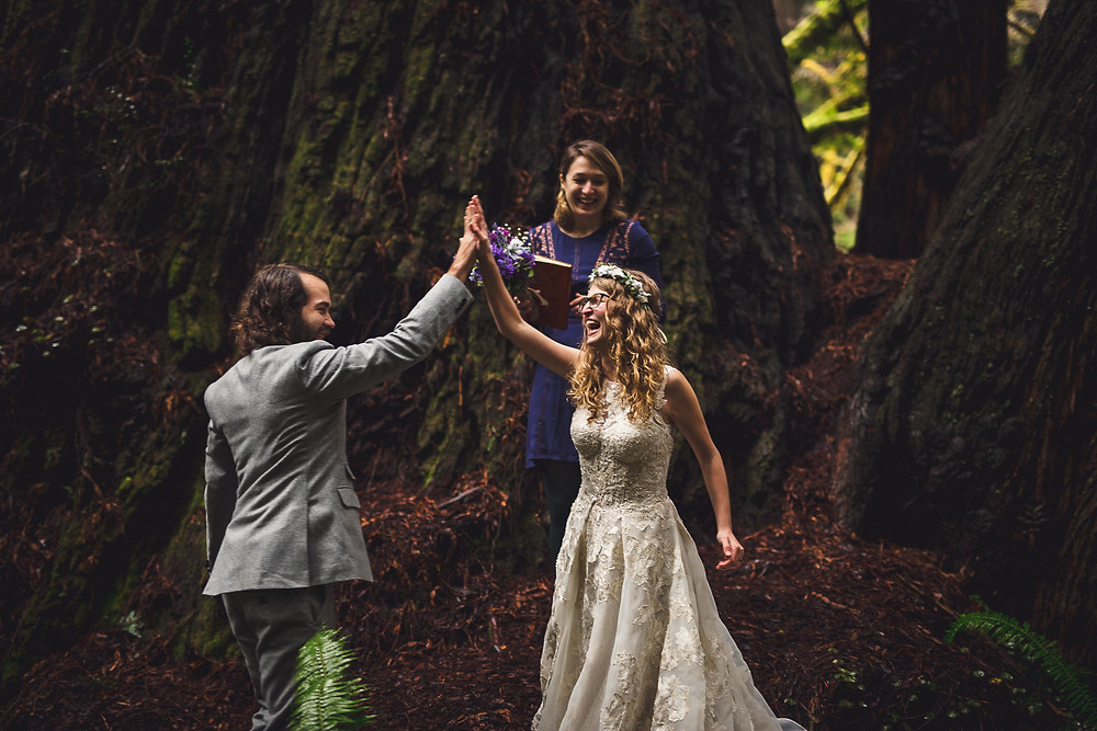 Redwood National Park Elopement