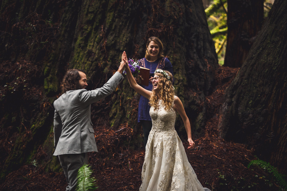Shaylee and Jake elope in the Redwood National Forest in California