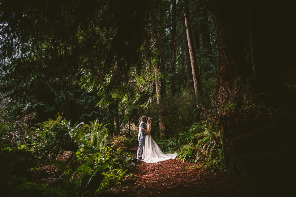 Jurassic Park vibes at Shaylee + Jake's Redwood elopement