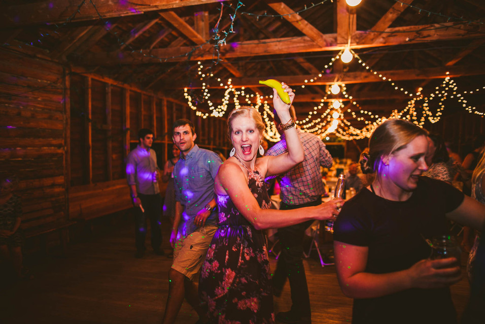 Wedding reception party at Springhill Pavilion