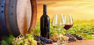 Wine Online: A 24-Part Series on Israeli Wine