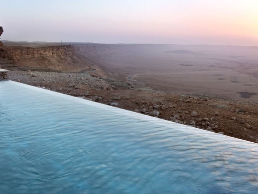 A Pool Party with Ibex at Machtesh Ramon