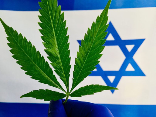 Medical Marijuana Officially Approved for Export - And It's High Time This Happened