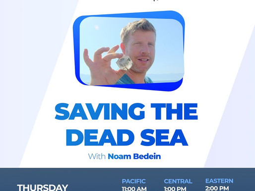 How to Save the Dead Sea - VIDEO