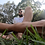 Thumbnail: Grassy Feet Tom