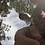 Thumbnail: Jake Sunny Day