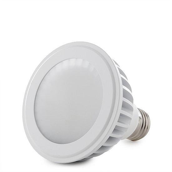 Ampoule LED 'Dagny' PAR30 12W xE27 960Lm