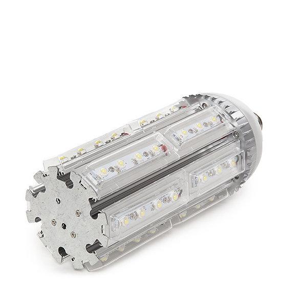 Ampoule LED Eclairage Publique 'Châteaufort' 42W 4200Lm