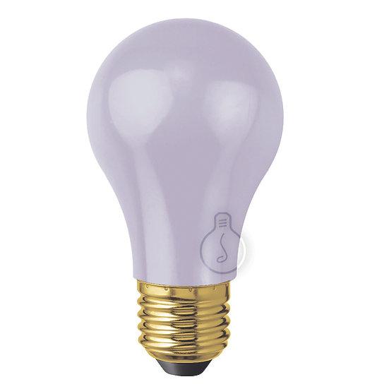 Ampoule LED E27 'Juvigny' Plastique Gris- Blanc Chaud