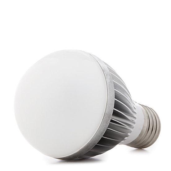 Ampoule LED 5W xE27 'Jouarre' 12VAC/Dc 425Lm